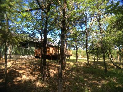 Jackson County, Josephine County Single Family Home For Sale: 745 Ragsdale Road