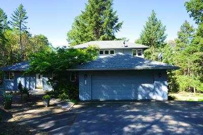 Merlin, Sunny Valley, Wimer, Rogue River, Wilderville, Grants Pass, Murphy, Wolf Creek, Hugo, Wonder Single Family Home For Sale: 900 Shadow Hills Drive