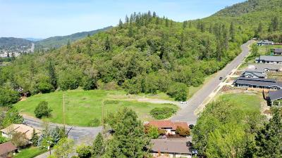 Merlin, Sunny Valley, Wimer, Rogue River, Wilderville, Grants Pass Residential Lots & Land For Sale: 1150 NE Hillcrest Drive
