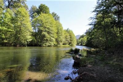 Grants Pass Residential Lots & Land For Sale: 18363 Highway 238