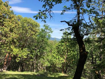 Merlin, Sunny Valley, Wimer, Rogue River, Wilderville, Grants Pass Residential Lots & Land For Sale: 477 Carter Drive