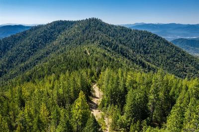 Merlin, Sunny Valley, Wimer, Rogue River, Wilderville, Grants Pass Residential Lots & Land For Sale: Winona Road