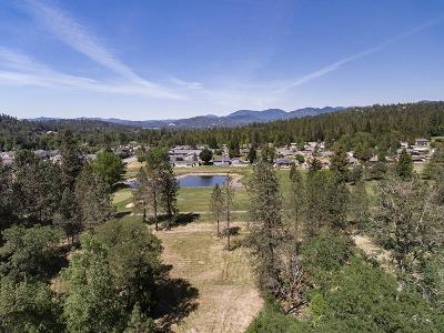 Grants Pass Residential Lots & Land For Sale: 3523 Williams Highway