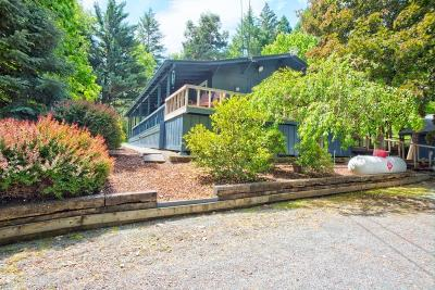 Grants Pass Single Family Home For Sale: 2450 SW Midway Avenue