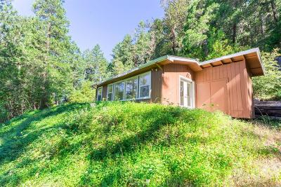Wolf Creek Single Family Home For Sale: 4234 Placer Road