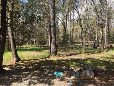 Grants Pass Single Family Home For Sale: 5181 New Hope Road