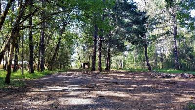 Josephine County Residential Lots & Land For Sale: 609 Red Mountain Drive