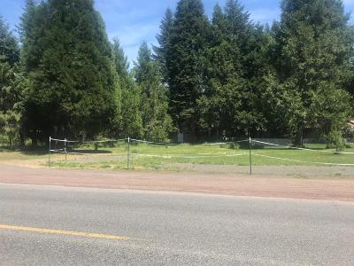 Jackson County, Josephine County Residential Lots & Land For Sale: 285 Mill Creek Drive
