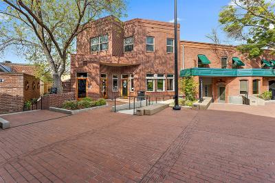 Ashland Condo/Townhouse For Sale: 68 E Main Street #2