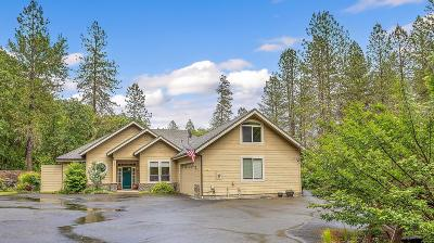 Grants Pass Single Family Home For Sale: 511 Honeycutt Drive