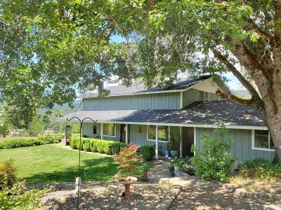 Rogue River Single Family Home For Sale: 65 Hidden Valley Lane