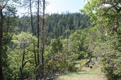 Josephine County Residential Lots & Land For Sale: 500 Shorthorn Gulch Road