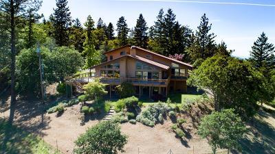 Ashland Single Family Home For Sale: 1999 Tolman Creek Road
