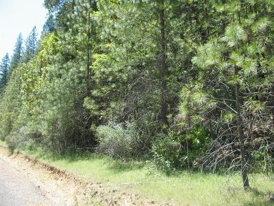 Rogue River Residential Lots & Land For Sale: W Evans Creek Road