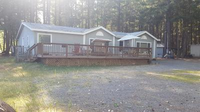 Rogue River Single Family Home For Sale: 731 Queens Branch Road