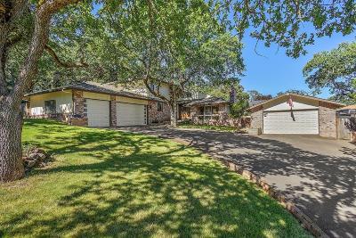 Single Family Home For Sale: 961 Sunrise Avenue