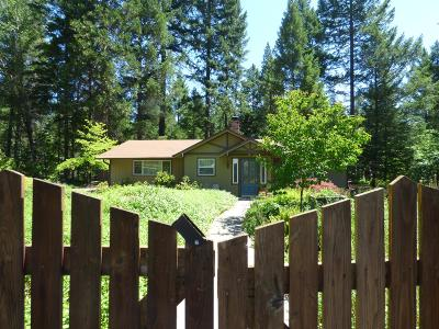 Rogue River Single Family Home For Sale: 10200 W Evans Creek Road
