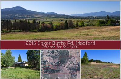 Single Family Home For Sale: 2215 Coker Butte Road