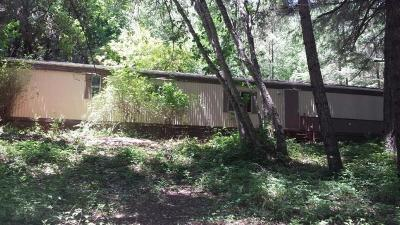 Josephine County Single Family Home For Sale: 520 Ingalls Lane