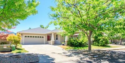 Ashland Single Family Home For Sale: 460 Williamson Way