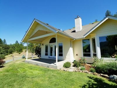 Rogue River Single Family Home For Sale: 304 Wards Creek Road
