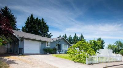 Phoenix Single Family Home For Sale: 505 Dano Way