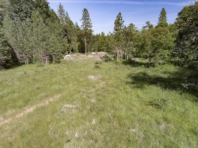 Williams Residential Lots & Land For Sale: Cedar Flat Road
