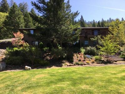 Grants Pass Single Family Home For Sale: 489 Agee Drive