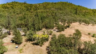 Residential Lots & Land For Sale: 176 Cindy Way