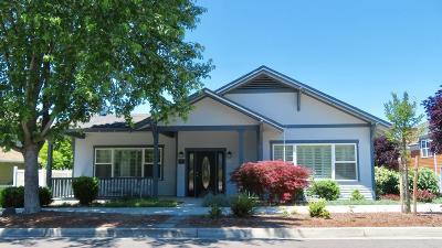 Ashland Single Family Home For Sale: 893 Plum Ridge Drive