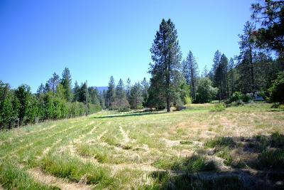 Grants Pass OR Residential Lots & Land For Sale: $130,000