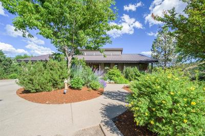 Ashland Single Family Home For Sale: 1042 Dead Indian Memorial Road