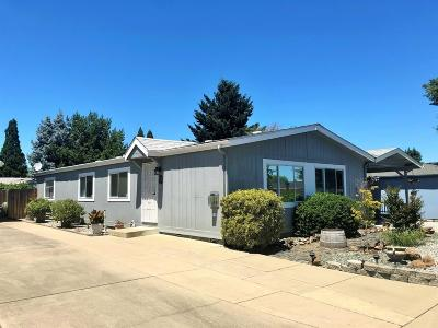 Central Point Single Family Home For Sale: 555 Freeman Road #130