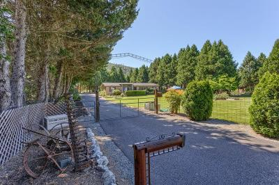 Jackson County, Josephine County Single Family Home For Sale: 1495 Rogue River Highway