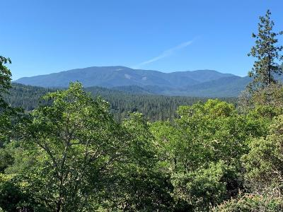 Josephine County Residential Lots & Land For Sale: 453 View Top Drive