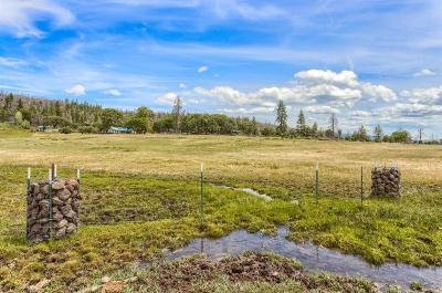 Ashland Farm For Sale: 9921 Copco Road