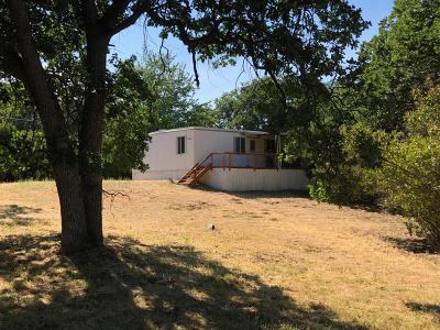 Ashland Single Family Home For Sale: 675 Reiten Drive