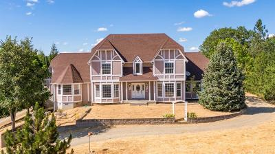 Merlin, Sunny Valley, Wimer, Rogue River, Wilderville, Grants Pass, Hugo, Murphy, Wolf Creek Single Family Home For Sale: 242 Valley Rogue Way