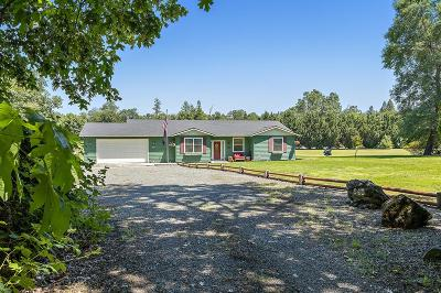 Grants Pass Single Family Home For Sale: 845 Riverbanks Road