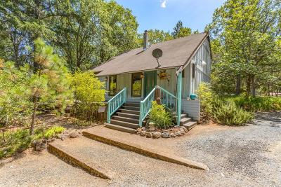 Grants Pass Single Family Home For Sale: 195 S Gordon Way