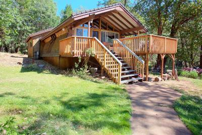 Rogue River Single Family Home For Sale: 4875 Pleasant Creek Road