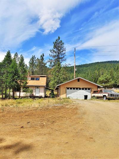 Josephine County Single Family Home For Sale: 650 Gold Canyon Drive