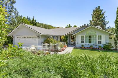 Jackson County, Josephine County Single Family Home For Sale: 111 Edgewood Park Drive