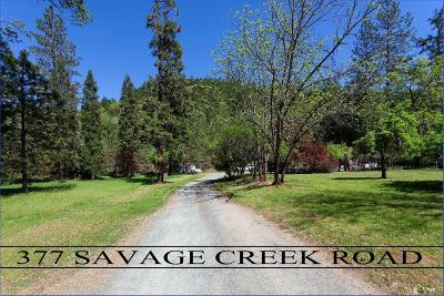 Grants Pass Single Family Home For Sale: 377 Savage Creek Road