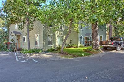 Phoenix Single Family Home For Sale: 209 Dano Drive