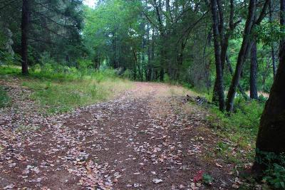 Josephine County Residential Lots & Land For Sale: 2000 W Jones Creek Road