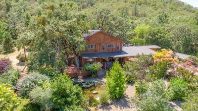 Central Point Single Family Home For Sale: 4851 Old Stage Road