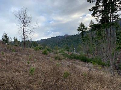 Residential Lots & Land For Sale: 8380 Lower Grave Creek Road