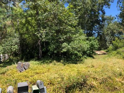 Merlin, Sunny Valley, Wimer, Rogue River, Wilderville, Grants Pass Residential Lots & Land For Sale: 2301 Upper River Road