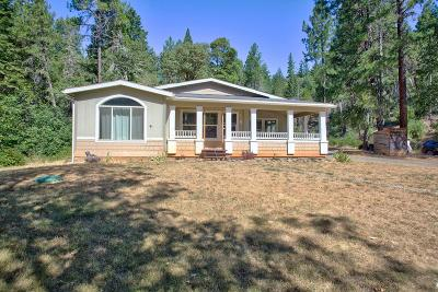 Josephine County Single Family Home For Sale: 4100 Lower Wolf Creek Road